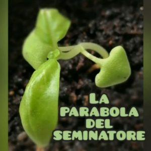 La parabola del seminatore